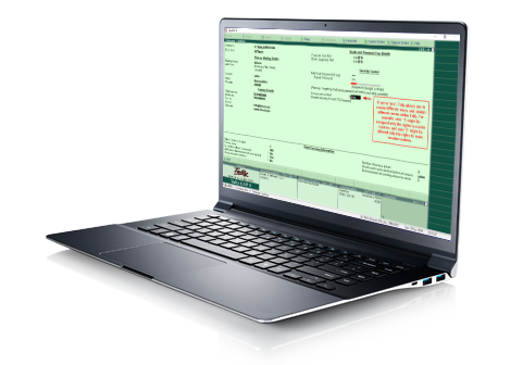 tally software service
